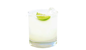 drink Altos Homemade Margarita
