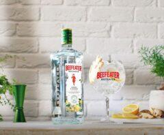 garrafa e drink de beefeater botanics